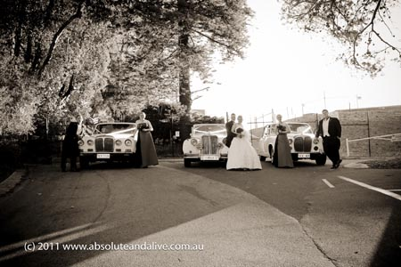 wedding limousines kings park
